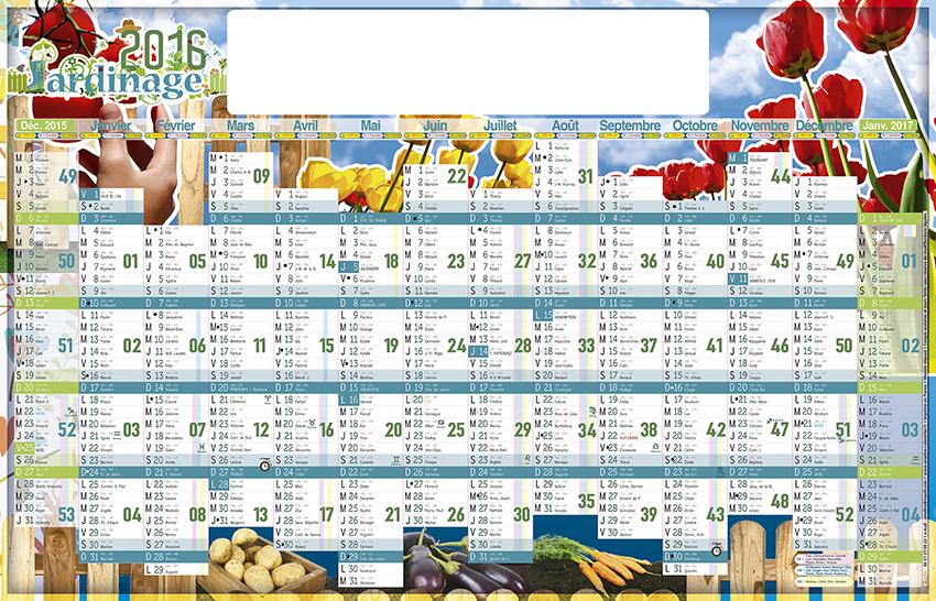 Pin calendrier du potager on pinterest for Calendrier jardin potager